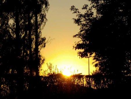 La fibromyalgie - au fil des jours (24/07/14)