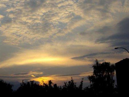 La fibromyalgie - au fil des jours (25/07/14)