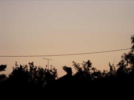 La fibromyalgie - au fil des jours (29/07/14)