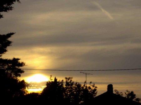 La fibromyalgie - au fil des jours (31/07/14) - Suite et fin