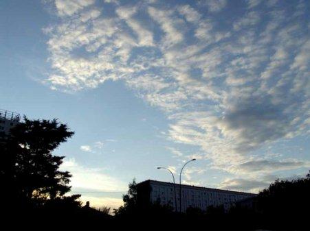 La fibromyalgie - au fil des jours (02/08/14) - Suite
