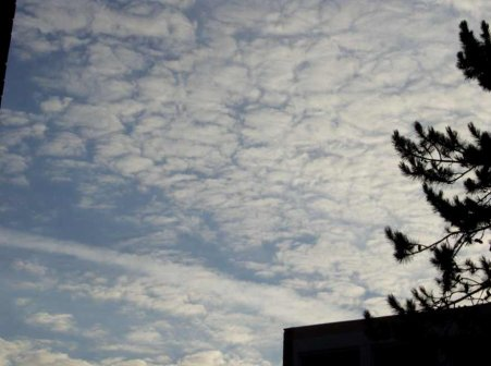 La fibromyalgie - Au fil des jours (16/08/14) - Suite