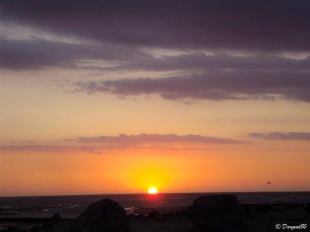 La fibromyalgie - Au fil des jours (02/09/14)