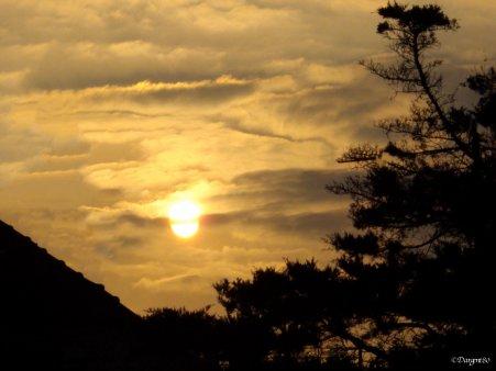 La fibromyalgie - Au fil des jours (10/09/14)