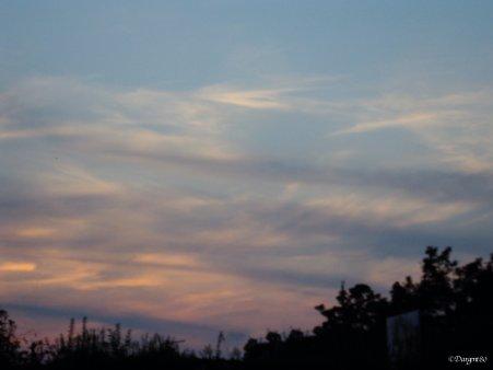 La fibromyalgie - Au fil des jours (13/09/14)