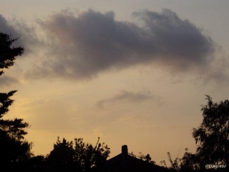 La fibromyalgie - Au fil des jours (24/09/14)