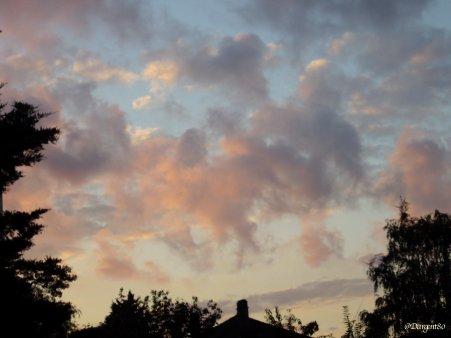 La fibromyalgie - Au fil des jours (24/09/14) - Suite et fin
