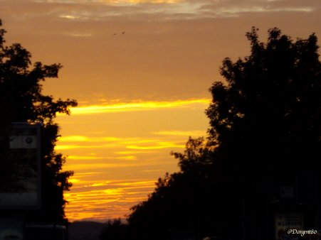 La fibromyalgie - Au fil des jours (25/09/14)
