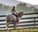 Photo de Passionement-Equitation