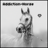 Addiction-Horse
