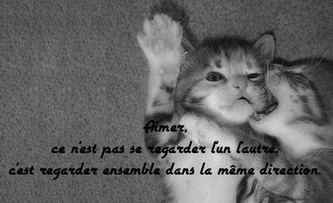 Citations~ ❤