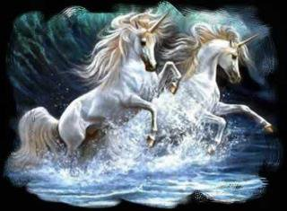 beautiful pictures of unicorn