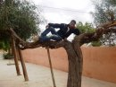 Photo de bahabrahim