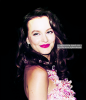 ***  ◊ LEIGHTONonline | Ta meilleure source sur l'actualité de la talentueuse Leighton M. Meester !  ***