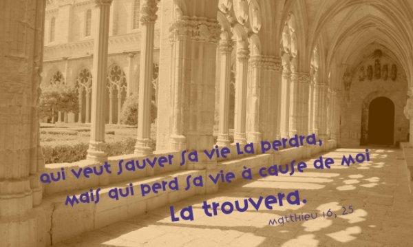 VENDREDI 11 AOÛT 2017 Évangile de Jésus-Christ selon saint Matthieu (16, 24-28)
