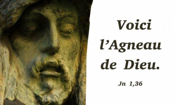 DIMANCHE 14 JANVIER 2018  Évangile: Jean (1, 35‑42)