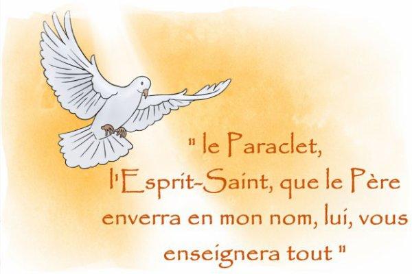 ÉVANGILE DU LUNDI 20 MAI 2019 « L'Esprit Saint que le Père enverra en mon nom, lui, vous enseignera tout » (Jn 14, 21-26)