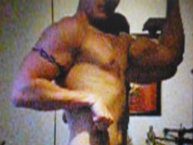 musculation: un art de vivre