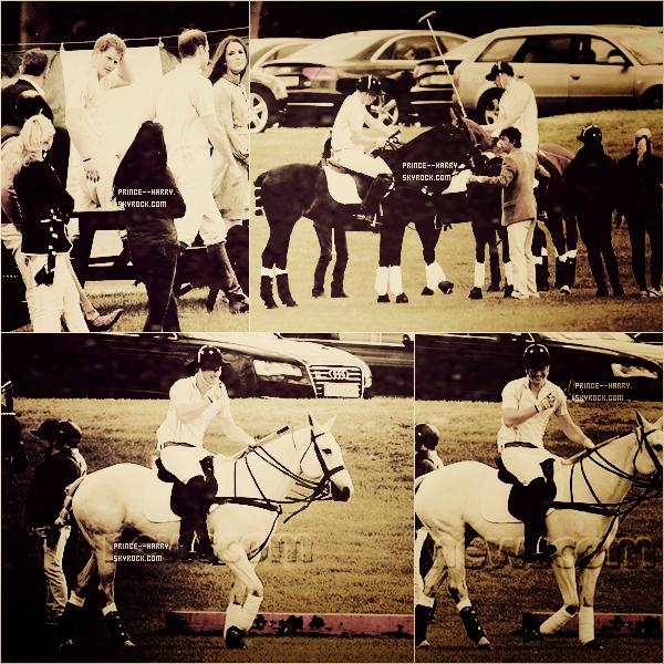 . 14 Mai 2012 : Harry & son frère William sont allés faire du polo !.