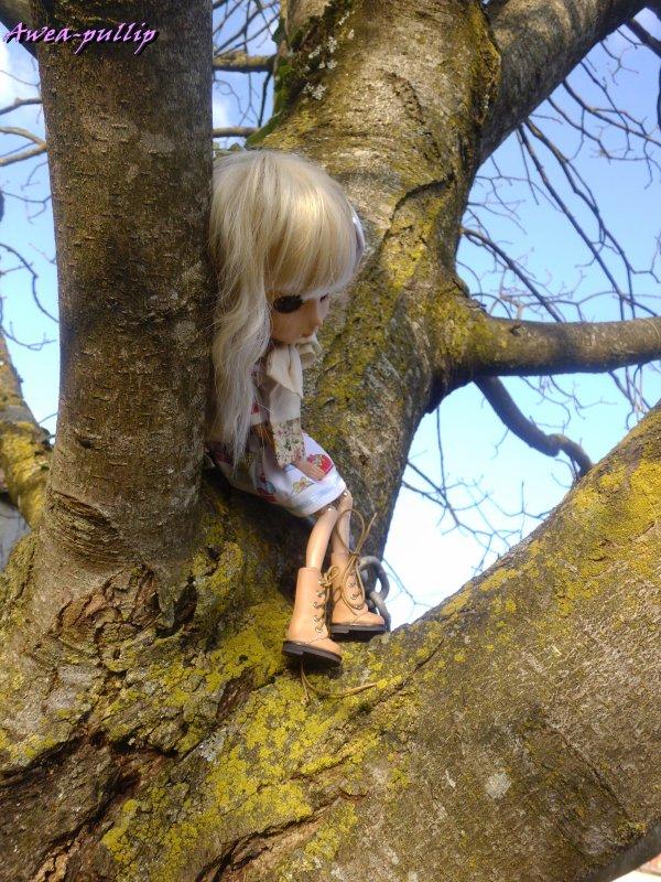 Le printemps arrive mais les arbres sont toujours nus.