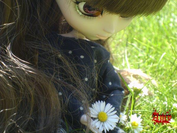 Ce souffle de printemps #1
