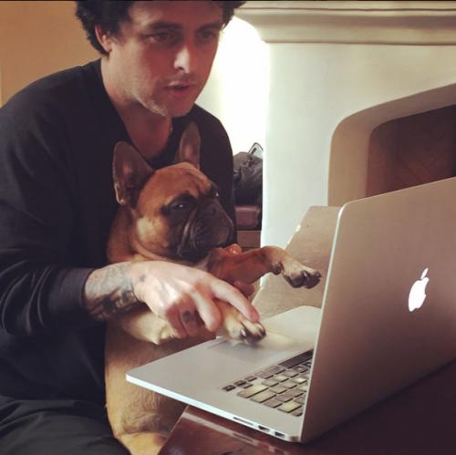 Billie Joe et Mojo trop cute