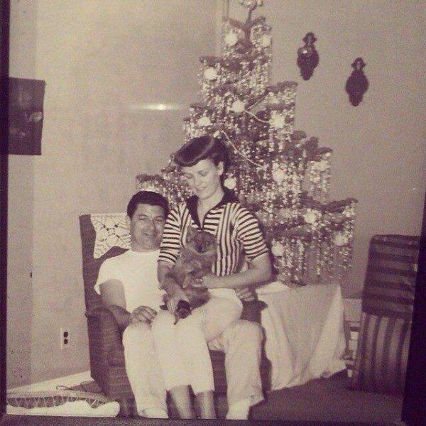 Le papa et la maman de Billie Joe Andy et Ollie😊