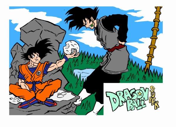 dragonball super son goku et black goku