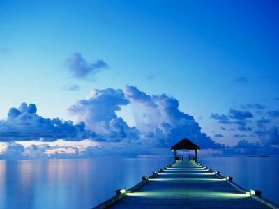 Chaque instant de la vie est une source de bonheur à saisir...