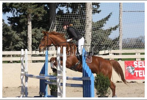 centre equestre bellegarde