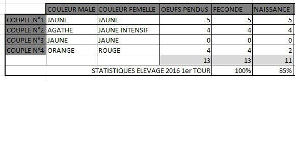 Statistiques du 1er Tour d'élevage 2016