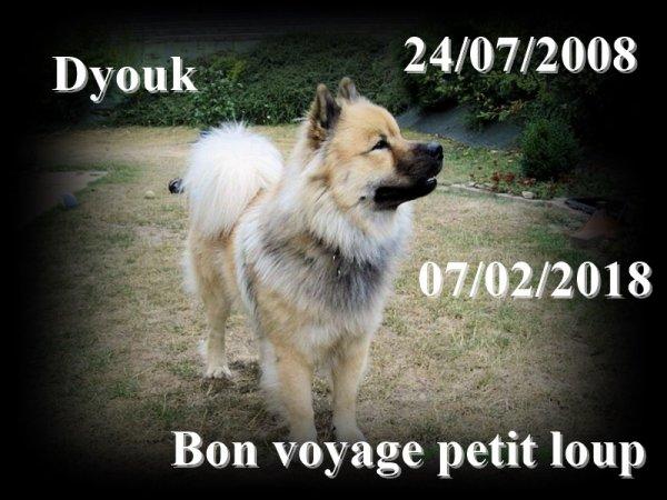 Dyouk
