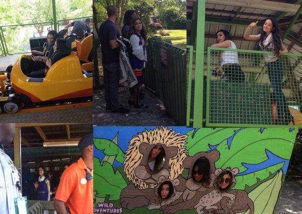 Wild Adventures Theme Park.