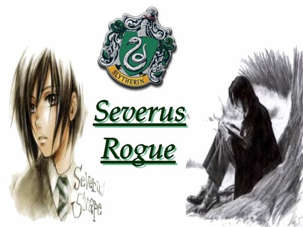 montage 14 Severus Rogue