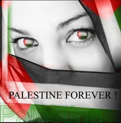 PALESTINE VAINCRA IN SHA ALLAH <3