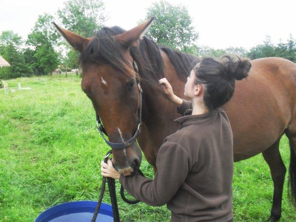 """""""Le travail sur le mental et l'émotionnel du cheval est sans fin."""""""