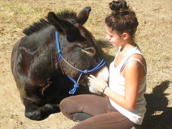 """""""Quand tu dis """"J'ai un beau cheval"""", tu t'enorgueillis d'un avantage qui appartient au cheval."""""""