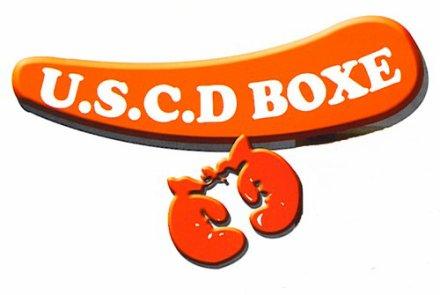 uscd boxe