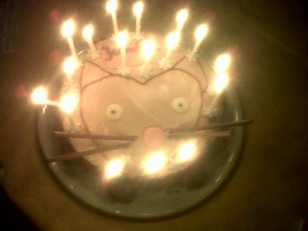 Mon Gateau d'anniversaire!! :) Trop beau!! :) '-'