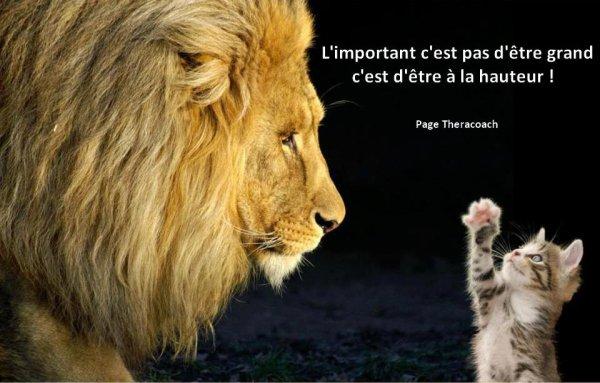 L'IMPORTANT ... PETITE  VERITE !