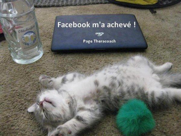 VIVE  FACEBOOK !