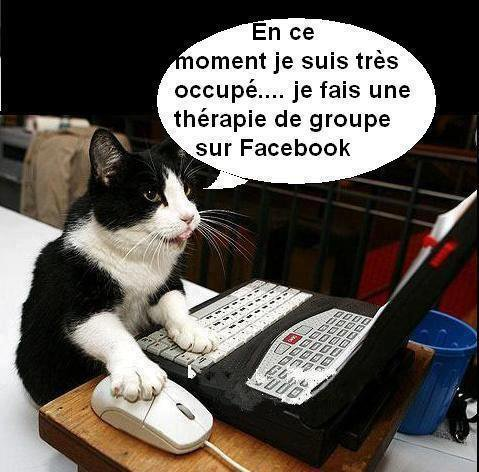 CHAT THERAPIE !