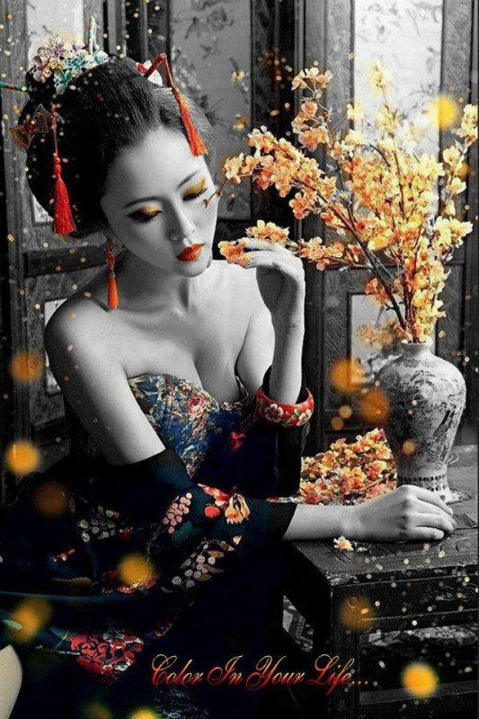 Belle geisha