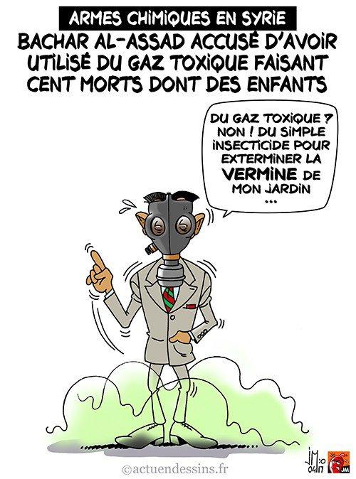 """Spécial """"Attaques chimiques en Syrie : histoire d'un massacre de masse..."""" - Image n° 2/2 !..."""