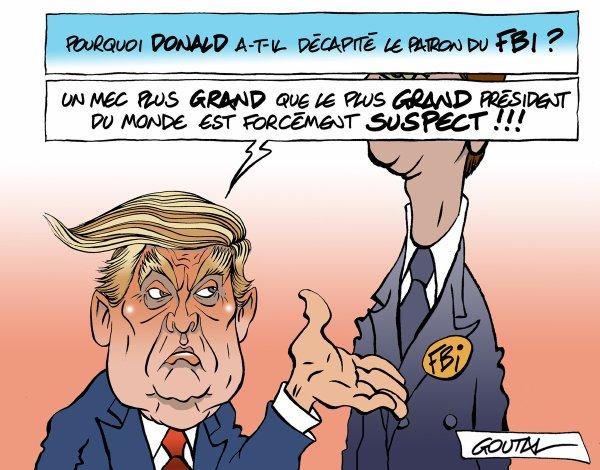 """Spécial """"Donald TRUMP VS James COMEY, une histoire de (trop grande) taille ..."""" - Image n° 2/2 !..."""