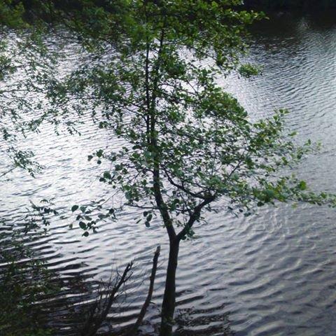 """Spécial """"QUE LA NATURE EST BELLE..."""" - Photo n° 2/2 !..."""