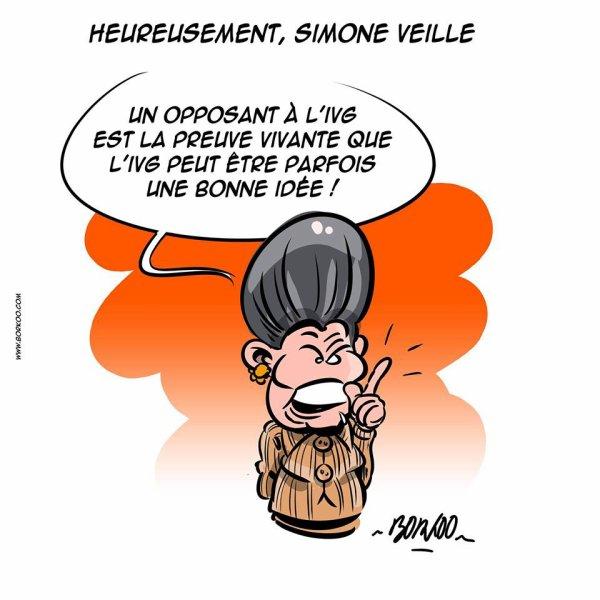 """Spécial """"HOMMAGE SIMONE VEIL.."""" - Image n° 4/4 !..."""