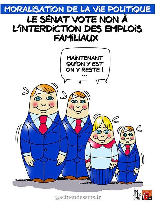 """Spécial """"Sénat : pas d'interdiction des emplois familiaux..."""" - Image n° 2/2 !..."""