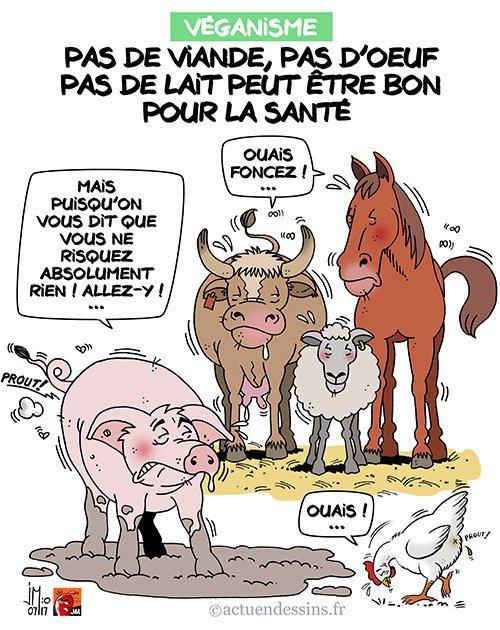"""Spécial """"Le véganisme bon pour la santé ?..."""" - Image n° 2/2 !..."""