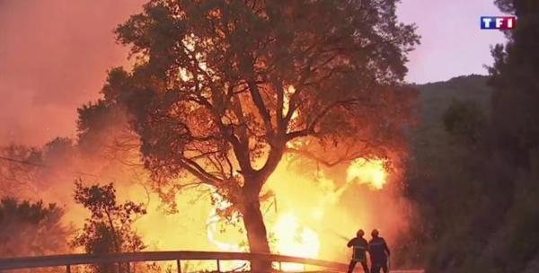 """Spécial """"Incendies : 2 200 hectares de maquis ravagés en Corse..."""" - Image n° 1/2 !..."""